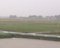 台風21号の影響