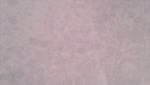 塗り壁のしみ